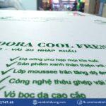 nem foam adora cool fresh 5 nembinhduong