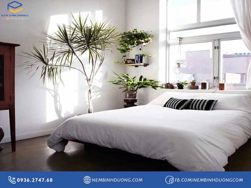 5 mẹo trang trí phòng ngủ ngày tết mang đến tài lộc - Nệm Bình Dương