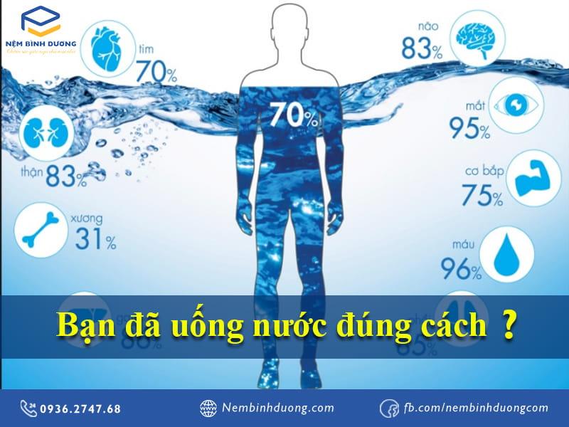 Bạn đã uống nước đúng cách? Nệm Bình Dương
